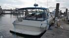 1993 Sea Ray 400 EC - #1