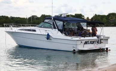 Sea Ray 460 Express Cruiser, 51', for sale - $35,500