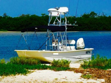 Carolina Skiff 2180 DLX, 20', for sale - $41,900