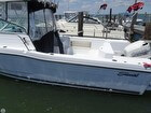 2001 Seaswirl Striper 2600 Limited Edition Walkaround - #4