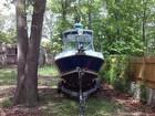 2002 Aquasport 250 Explorer - #4