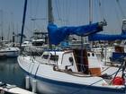 Nice Little Sailing Racer