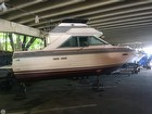 1988 Sea Ray 265 Sedan Bridge - #1