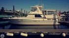 1984 Viking 44 Motor Yacht - #1