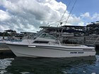 1994 Grady-white 25 Sailfish