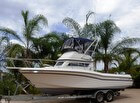 1991 Grady-White 26 Atlantic Flybridge - #1