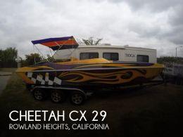 2006 Cheetah CX 29