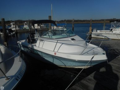 Angler 204 Limited Edition, 20', for sale - $19,999