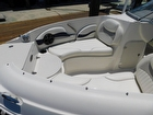 2013 Stingray 204 LR - #4