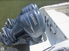 Dual Yamahas