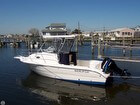 2003 Sea Fox 230 Walk Around - #1