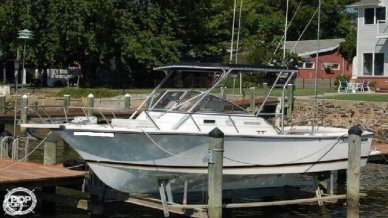 Shamrock PREDATOR 220 WA, 220, for sale - $19,995
