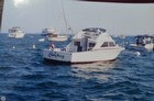 1973 Bertram 28 Flybridge Cruiser - #13