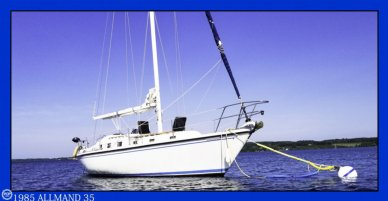 Allmand 35 Tall Rig, 34', for sale - $31,700