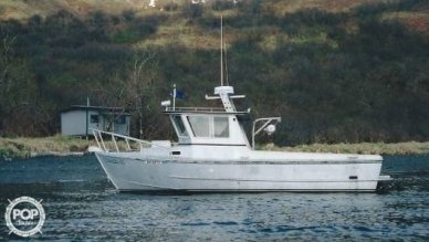 Homebuilt 28 Commercial Quality Workboat, 28, for sale - $90,000