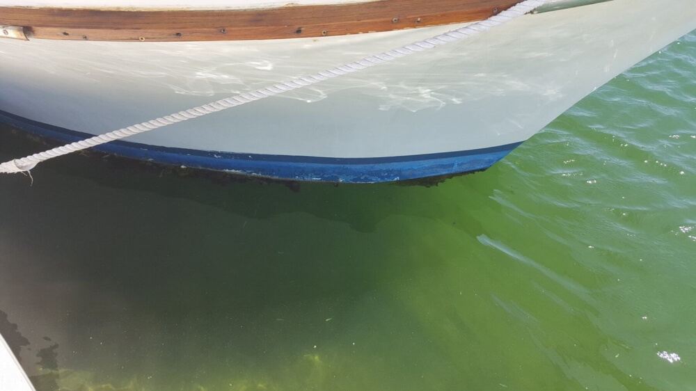 1983 Californian boat for sale, model of the boat is 43 MY & Image # 13 of 40