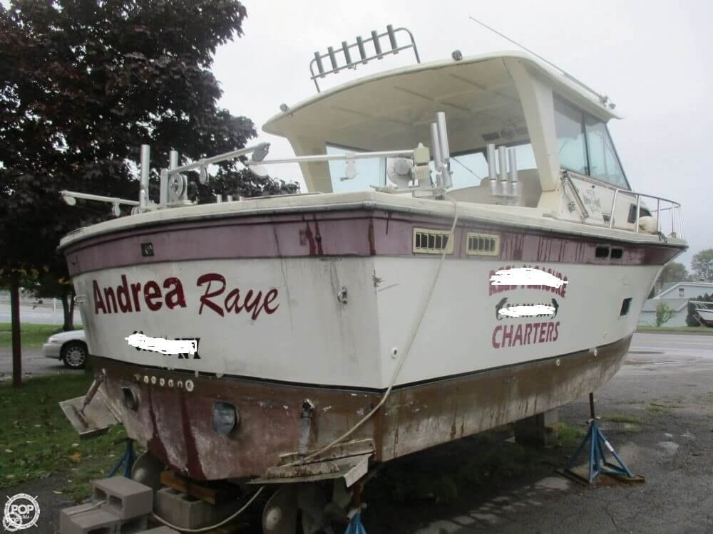 1990 Baha Cruisers boat for sale, model of the boat is 310 Sport Fisherman & Image # 3 of 41