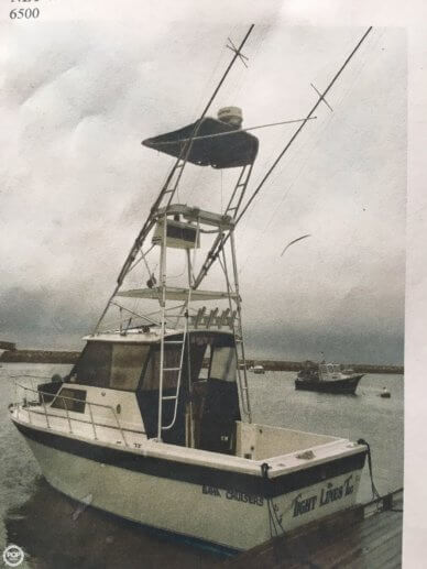 Baja 25, 25', for sale - $20,000