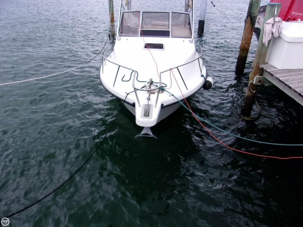 2003 Shamrock boat for sale, model of the boat is 260 Express & Image # 3 of 40