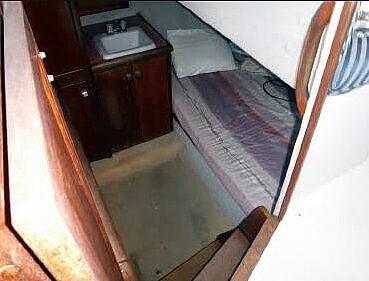 1987 Bayliner 32 - image 8