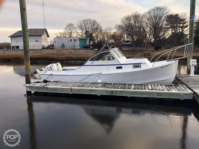 Sisu 26, 26, for sale - $23,900