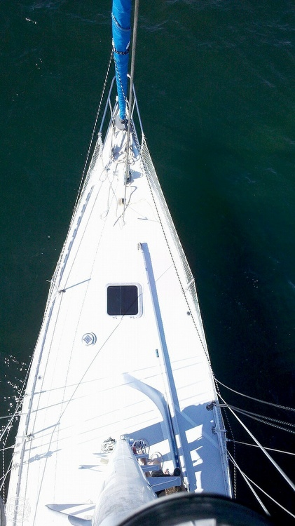 1989 Starratt Jenks boat for sale, model of the boat is Morgan 45 & Image # 18 of 40