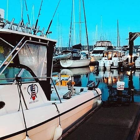 2001 United boat for sale, model of the boat is Sea Master 2588 & Image # 13 of 40