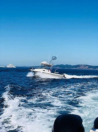 2001 United boat for sale, model of the boat is Sea Master 2588 & Image # 14 of 40