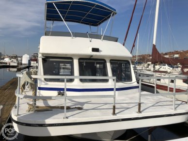 Gibson Sport, 41', for sale