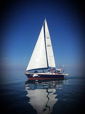 1984 Hunter boat for sale, model of the boat is 40 & Image # 4 of 40
