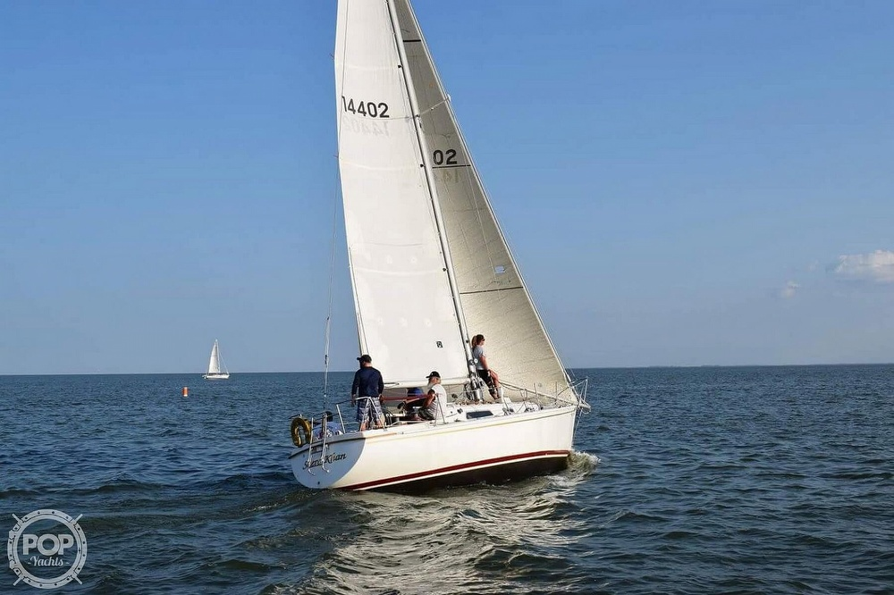 1975 Pearson boat for sale, model of the boat is 10-M Tall Rig & Image # 6 of 14