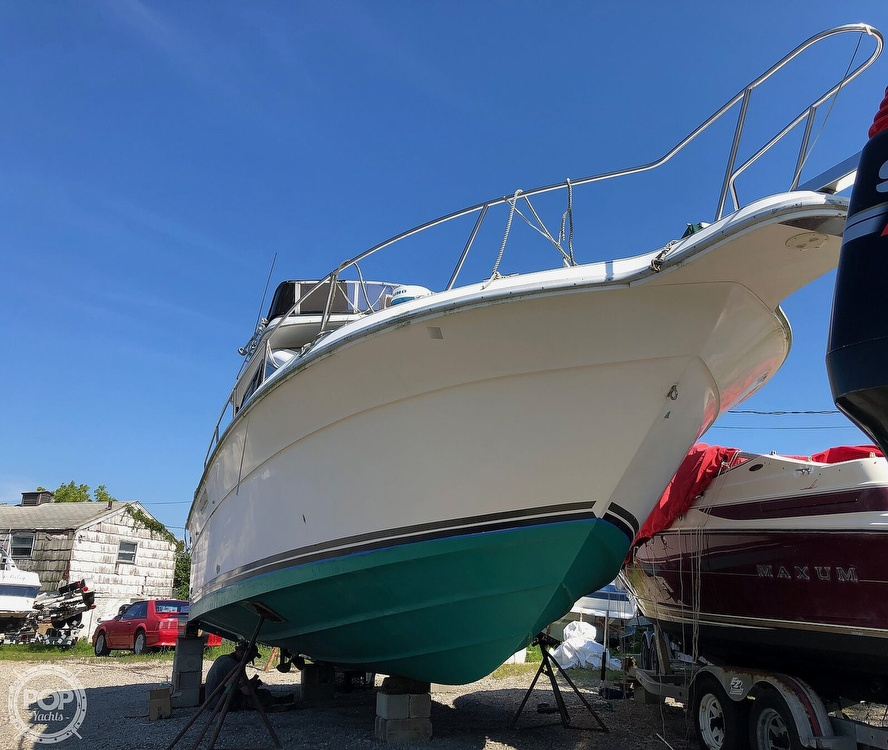 Bottom Paint  Antifouling