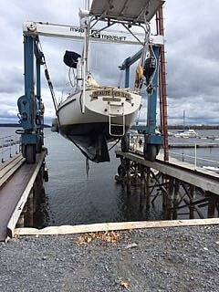 1979 Pearson boat for sale, model of the boat is P35 & Image # 20 of 29