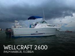 1995 Wellcraft 2600 Coastal