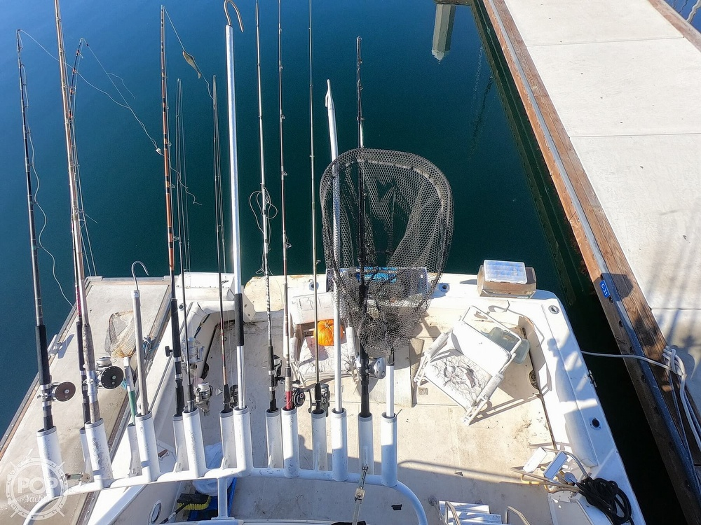 1988 Sea Ray boat for sale, model of the boat is 430 Convertible & Image # 16 of 40
