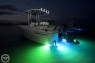 Shadow-caster Underwater LED Lights