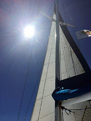 1987 Piver Trimaran boat for sale, model of the boat is 50 & Image # 5 of 31
