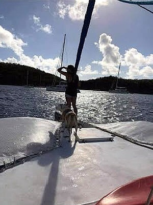 1987 Piver Trimaran boat for sale, model of the boat is 50 & Image # 7 of 31