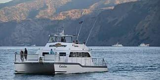 2012 Gold Coast 50 - image 3