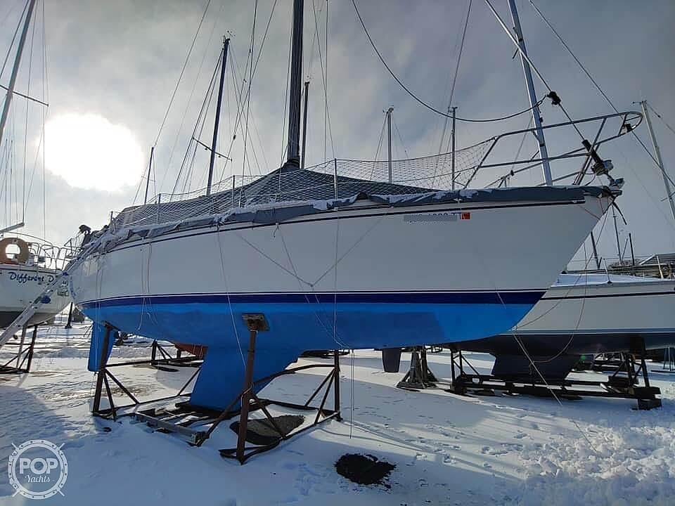 Catalina C36