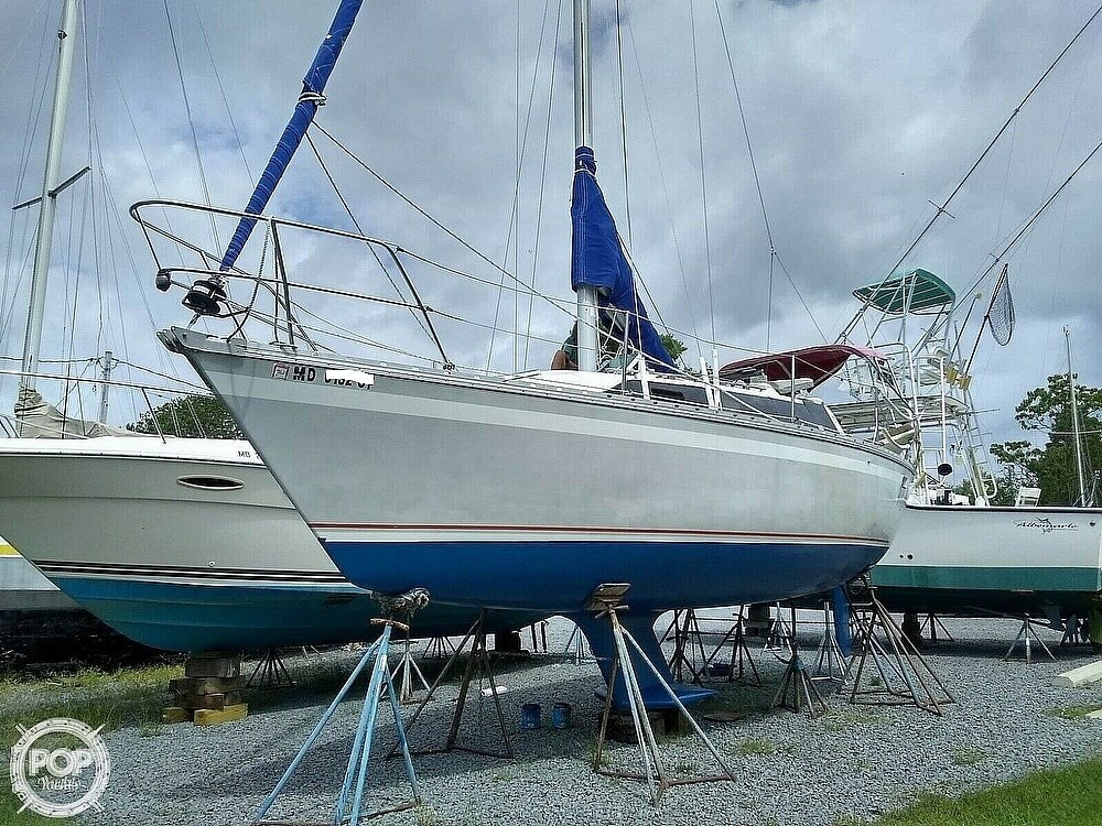 1987 O'day boat for sale, model of the boat is 302 & Image # 8 of 40