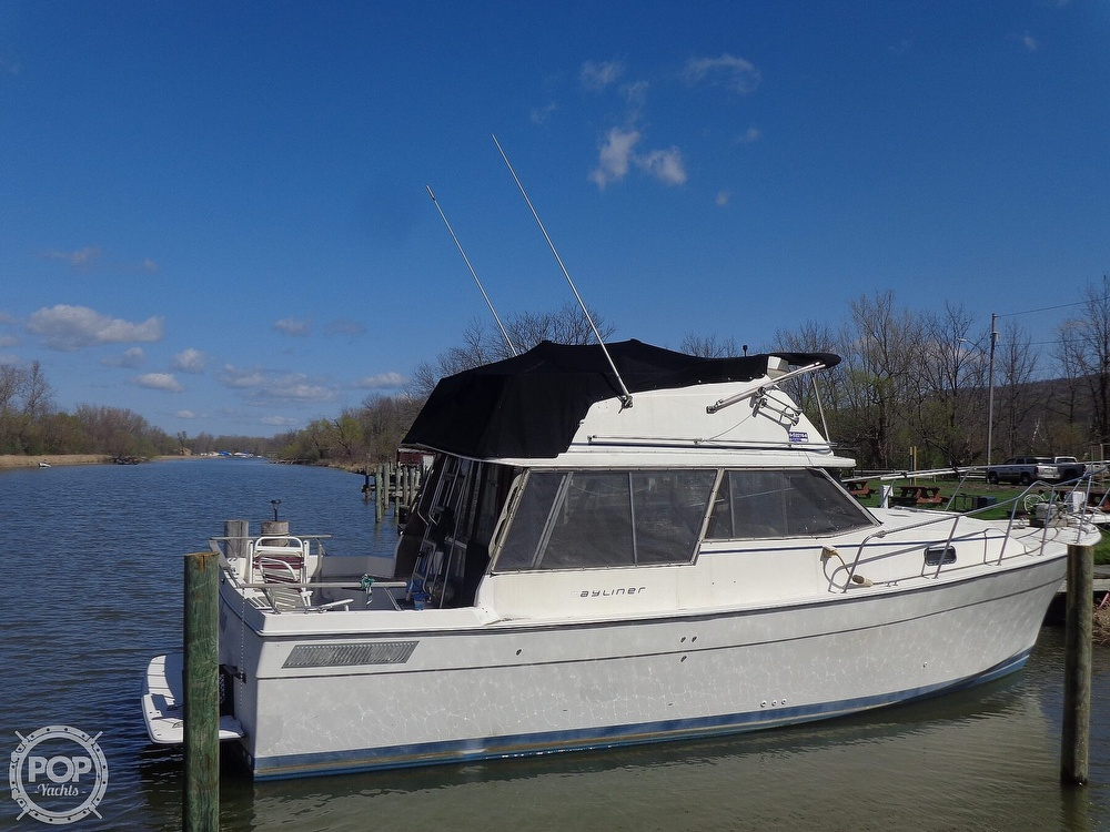 1983 Bayliner boat for sale, model of the boat is 3270 Explorer & Image # 3 of 40