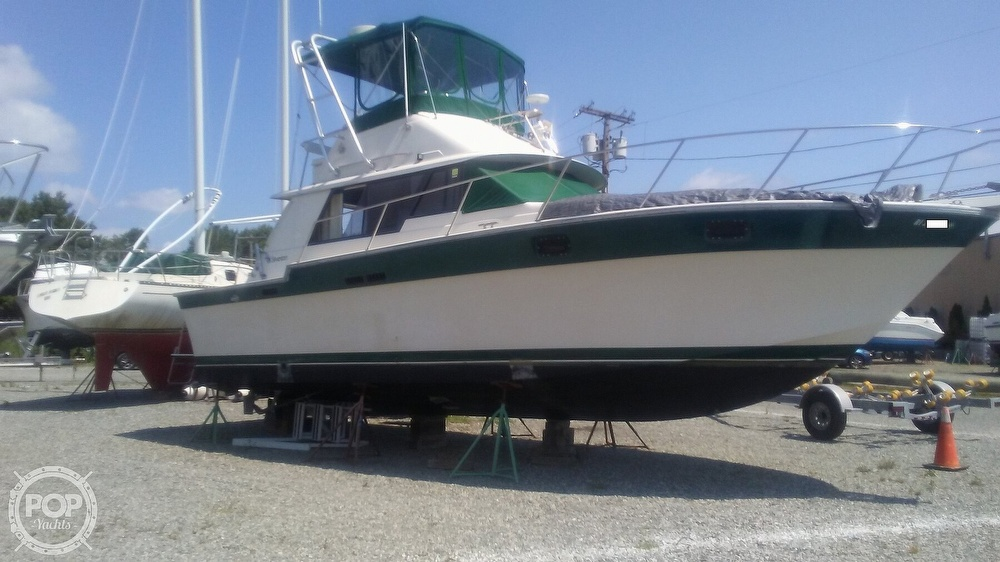 1984 Silverton boat for sale, model of the boat is 34' Convertible & Image # 3 of 40