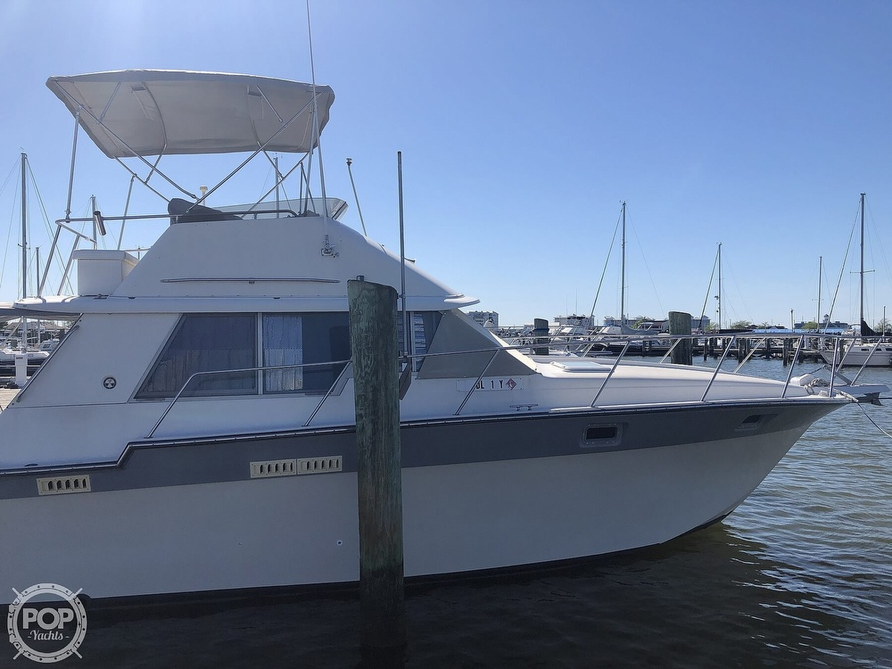 1987 Silverton boat for sale, model of the boat is 34 Convertible & Image # 11 of 40