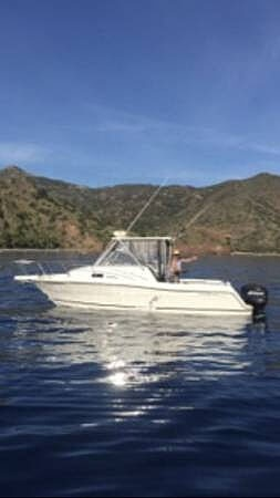 1995 Robalo boat for sale, model of the boat is 2440 & Image # 9 of 14