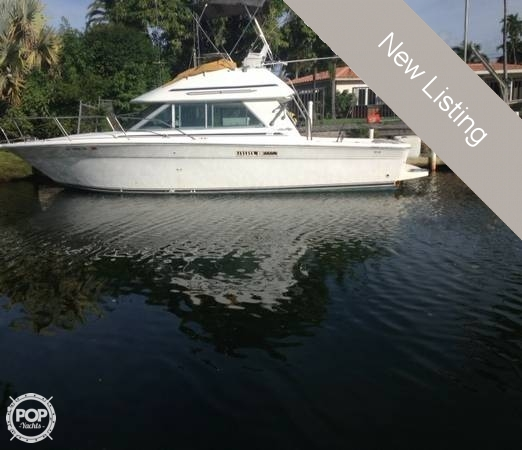 Sea ray fishing boats for sale sea ray fishing boats for for Sea ray fish