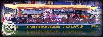 Delhi Glass Bottom Tour Boat, 31', for sale - $49,500