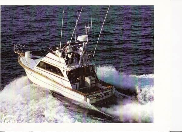 1979 Egg Harbor 36 Tournament Fisherman - Photo #9