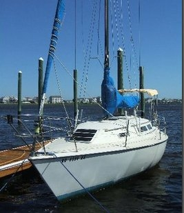 1980 Bayliner MAST HEAD SLOOP - Photo #4
