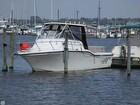2007 Baha Cruisers 257 WAC - #1